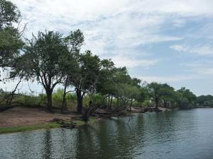 Zambia 2010 022